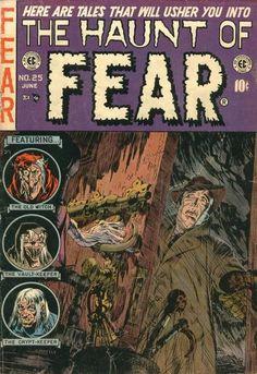 Haunt of Fear 25.jpg