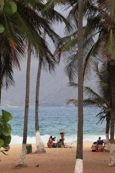Playas de Choroní en #Venezuela #Aragua