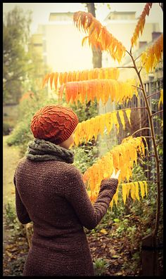 Pumpkin Pie by Cello Knits - free on Ravelry