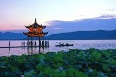 West Lake is my great escape #hangzhou #west lake #china #asia #travel #explore #history #outdoors #photography
