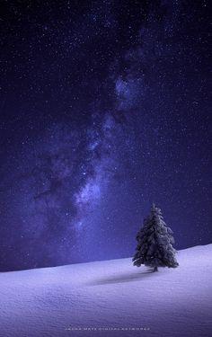 ~ Winter Symphony ~ by Jasna Matz