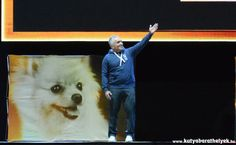 Cesar Millan Live Budapest - A csodálatos kutyadoki Cesar Millan, Budapest, Minden, Your Dog, Live, Dogs, Animals, Animales, Animaux