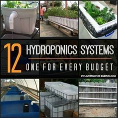 15 Hydroponics System Designs To Get Your Brain Going!   It's easy to build your own hydroponics system when you have this many to copy from. #hydroponicsflowers #hydroponicseasy #hydroponicsdesign