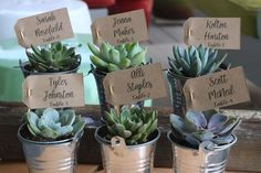 Custom name / table tags - wedding succulent favors for sale bulk Succulent Names, Succulent Wedding Favors, Wedding Favours, Wedding Sparklers, Wedding Programs, Wedding Bouquets, Best Wedding Websites, Wedding Thank You Gifts, Wedding Wishes