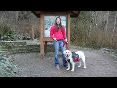 EZYDog Backpack for Dogs