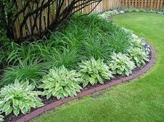 hostas daylilies roses hydrangeas gardens -Curves of the bed and the layering of plants make it look neat and tidy