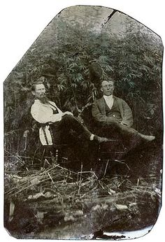 Unidentified photographer, Two men in a hemp field, 1880s