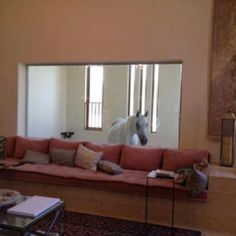 You must really love your horse if you want the barn right outside your living room window.  This way it can watch tv with you, lol.