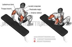 Best chest exercises for lower and upper chest | Weight Training Guide Best Shoulder Workout, Best Chest Workout, Chest Workouts, Chest Exercises, Fitness Workouts, Gym Workout Tips, Workout Videos, Tummy Workout, Triceps Workout