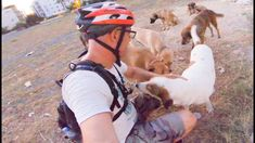 Fahrradtour in Antalya Horses, Animals, Destinations, Viajes, Animales, Animaux, Animal, Animais, Horse