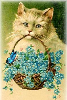 Vintage cat forget-me-nots postcard Art Vintage, Vintage Ephemera, Vintage Cards, Vintage Postcards, Vintage Pictures, Vintage Images, Gato Gif, Photo Chat, Cat Cards