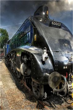 Sir Nigel by Simon Bull Images, via Flickr