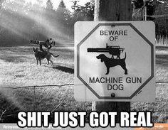 facebook like machine gun meme - Google Search