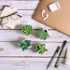 4 SET Artificial Succulents Plants Mini Faux Fake Potted DIY   Etsy Artificial Succulents, Faux Succulents, Succulent Pots, Planting Succulents, Fake Plants Decor, Plant Decor, Bathroom Counter Decor, Home Office, Diy Projects For Beginners
