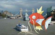 It turns out that London's most famous waterway is a hotbed for Pokémon – and now a two hour fishing cruise is being offered to allow budding Pokémon masters to catch a variety of rare beasts, including Squirtle, Starmie and Gyarados.  The 2-hour cruise is being held on the MV Hurlingham – and costs £5 for children, or £10 for adults too – because we're all especially keen on living out our childhood dreams once again.