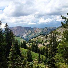 There's no place like Alta. #visitsaltlake #saltlakecity #mountains #wasatch #skiutah #summer