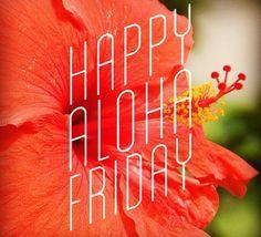 #AlohaFriday shout out and big #mahalo @jrushin @civilbeat #welovehowyouFlyWire #startups #XLR8UH