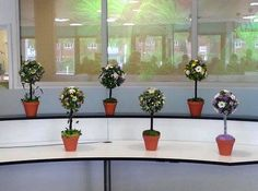 More Topiary Trees at the front desk by Level 2 Floristry students. They look so welcoming!