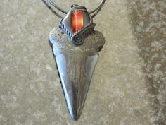 Fossil Shark Tooth pendant with red Carnelian