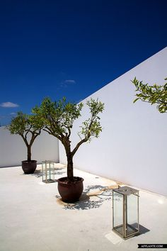 L'AND Vineyards Resort // Marcio Kogan