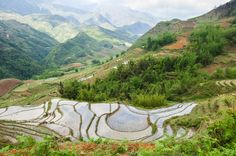 A guide to Trekking In Sapa With A Local Guide from someone who has been there - thanks to Sunkissed Suitcase  | ce petit cochon | travel | sapa vietnam