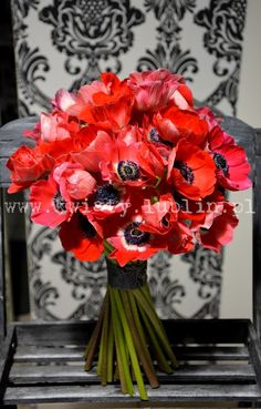 Pracownia florystyczna Passja-Flora Flora, Burgundy, Anemones, Bouquets, Plants, Red, Bouquet, Bunch Of Flowers, Plant
