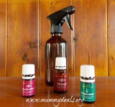 Homemade Bug Spray Recipe 2