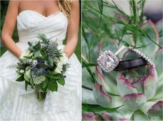 Nantucket Wedding Katie Kaizer Photography. succulent flowers