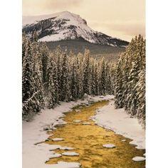 Posterazzi Fv5200 Natural Moments Photography Maligne River In Winter Jasper National Park Alberta Canvas Art - Darwin Wiggett Design Pics (24 x 32)