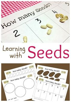 Printable Activity for Learning Math with Seeds http://theeducatorsspinonit.com