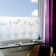 Fönsterfilm - Orkidéer