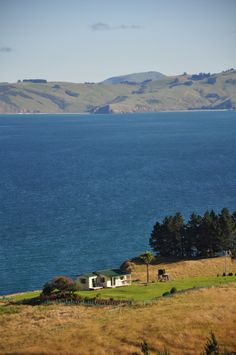 A lonely batch on the Otago peninsula near Dunedin (A bach is the Kiwi term for a vacation cottage, or a holiday home.