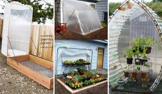 17 Simple Budget-Friendly Plans to Build a Greenhouse