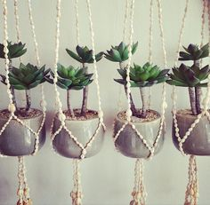 Hanging succulents via Hope and May