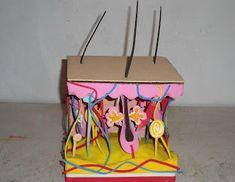 Estructura de la Piel Art Drawings For Kids, Pencil Art Drawings, Atom Model Project, School Board Decoration, Science Chart, Skin Anatomy, Biology Projects, Psoriasis Skin, Business Planner
