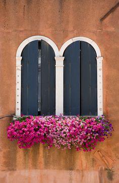 Ventanas y flores de colores, Venice