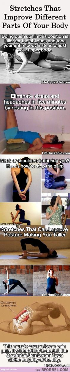 Types Of Stretches That Improve Different Parts Of Your Body I really love stretching.