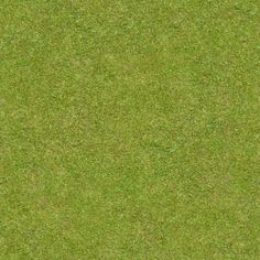 Short, flattened green grass with thick blades. Texture is consistent throughout.