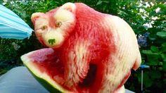 Orso in frutta