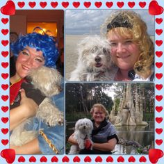 Bassie & Me - he is a little fluffy & white Angel now