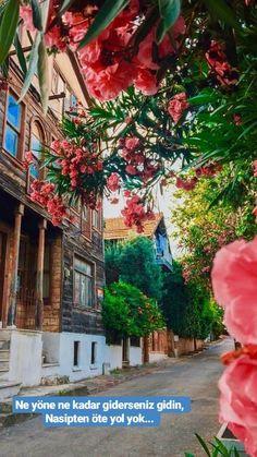 Kınalıada - Travel tips - Travel tour - travel ideas Beautiful Streets, Life Is Beautiful, Islam, Best Entrepreneurs, Istanbul Travel, Beautiful Places To Travel, Travel Tours, Travel Ideas, Dream City