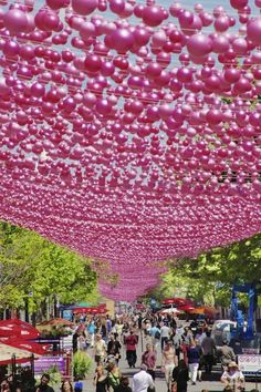 Les Boules Roses installation by landscape architect Claude Cormier | Featuring 200,000 resin balls in three sizes and five shades of pink suspended over Sainte-Catherine Street East in Montréal (Québec), Canada