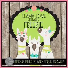 Llama Classroom Decor Set by moonlight crafter by Bridget