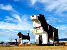 Dog Bark Park Inn (Cottonwood, Idaho)  Un 'bed and breakfast' dentro de un perro gigante y con mucha historia, ¿no es alucinante?.