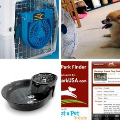 Gadgets & Gear to Help Your Dog Beat the Summer Heat