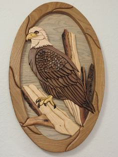 This bald eagle is made with walnut, maple, yellowheart, pecan and oak and wenge. it measures 28 by 18 and is glued to a 3/4 piece of oak