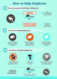How to Help Elephants by worldelephantday.org
