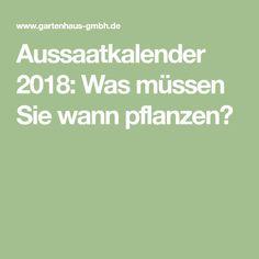 Aussaatkalender 2018: Was müssen Sie wann pflanzen?