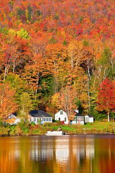"""See Vermont in the fall: """"Lake Elmore, VT"""" New England States, New England Fall, Stowe Vermont, Fotografia Macro, Autumn Scenes, Fall Pictures, Belle Photo, Green Mountain, Places To Go"""