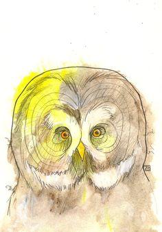 Great Grey Owl Mixed Media Portrait 8X10 Art by thepairabirds, $20.00
